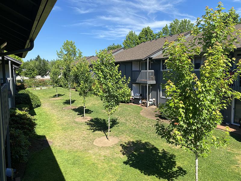 Andresen Park